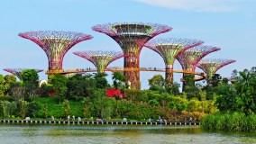 Летим в Сингапур из Москвы за 21 300 рублей с China Southern