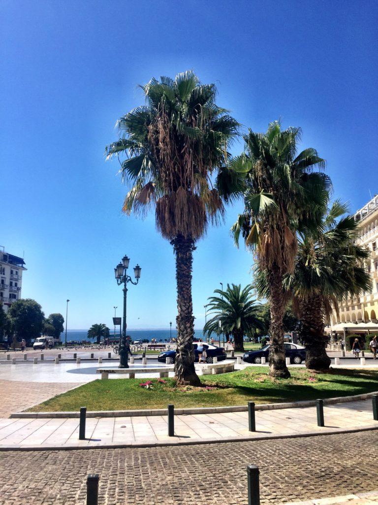 palms promenade Thessaloniki