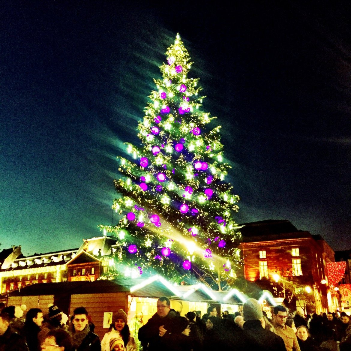 Great Christmas Tree, Place Kleber, Strasbourg