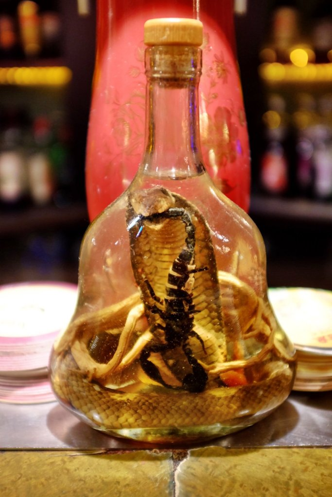 A preserved cobra eating a preserved scorpion in a bottle of liquor. We saw this while being in a pub at the Christmas markets in Strasbourg