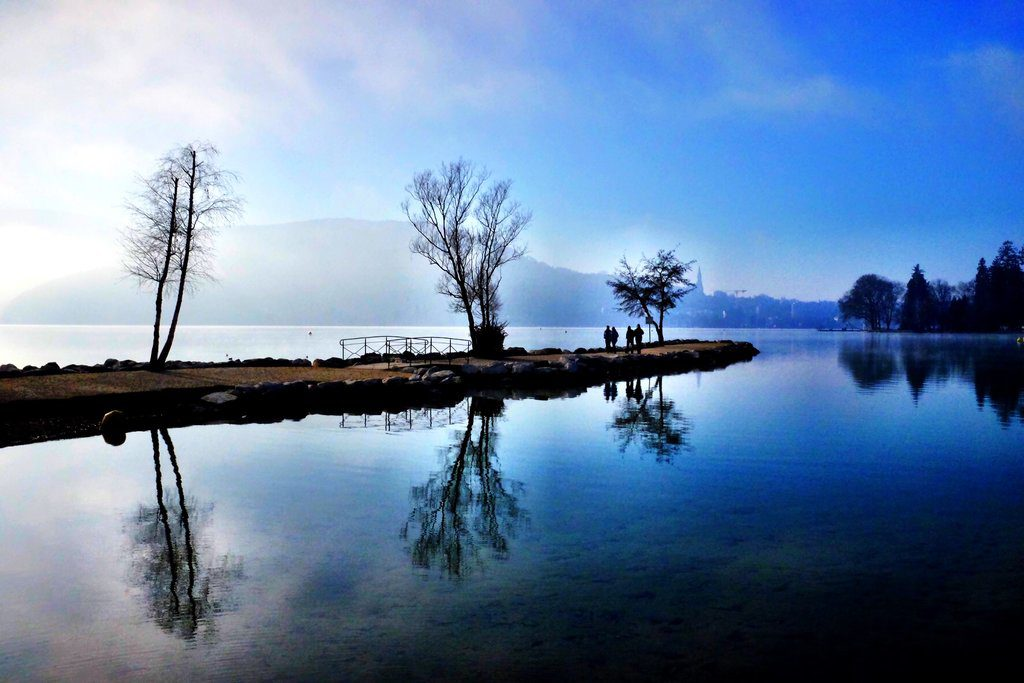 Reflecting trees at the lake Annecy