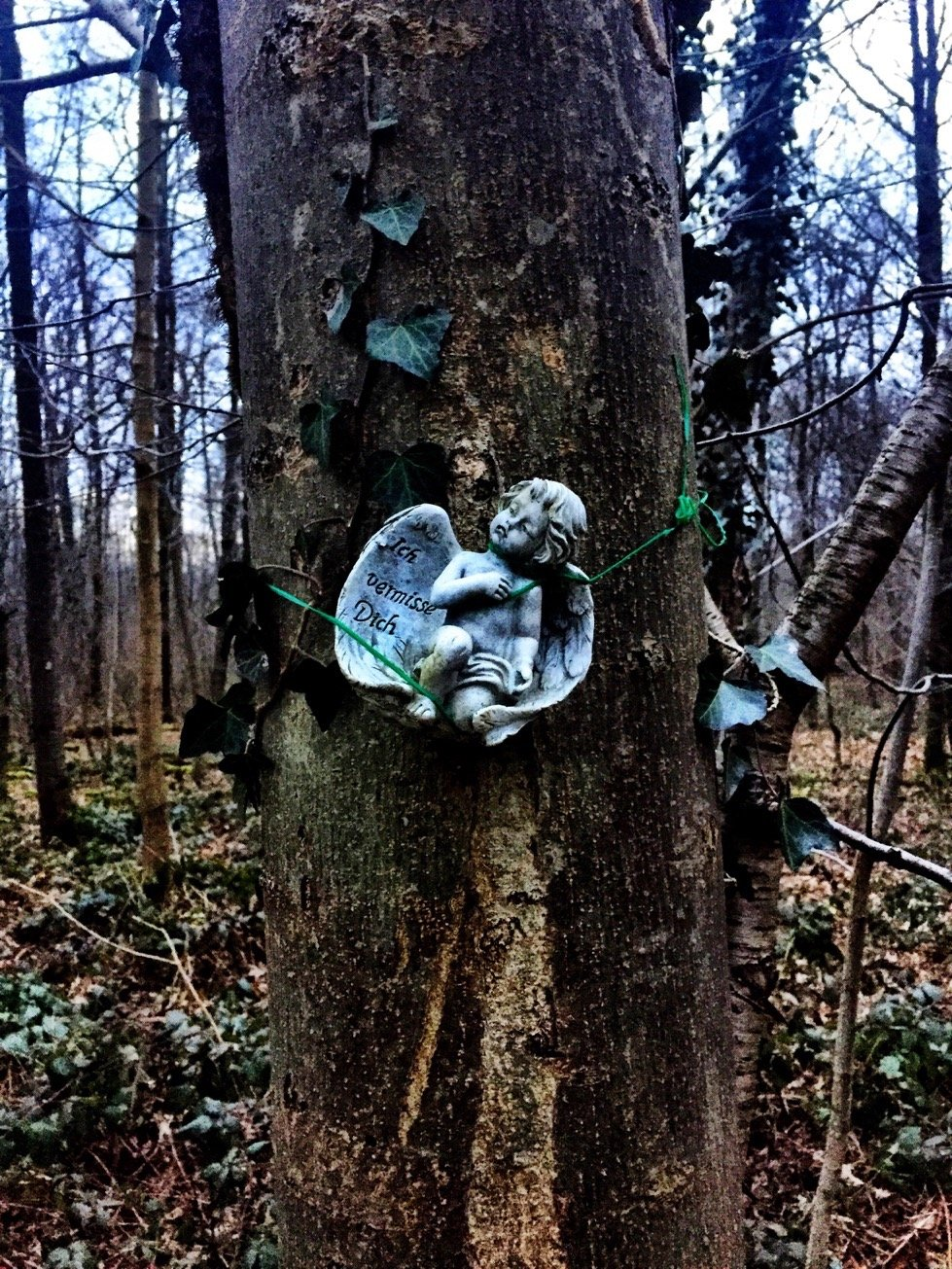 """An angel bound to a tree we saw in a forest in Birsfelden. The text says """"I miss you"""""""