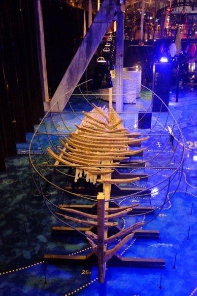 Tallinn city break Bottom of wooden ship at the Seaplane Museum in Tallinn
