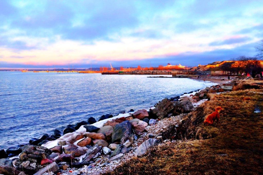 Tallinn Beach