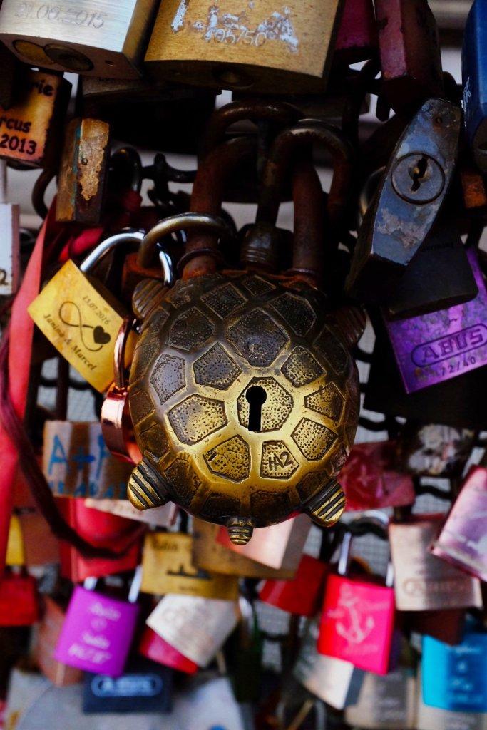 turtle lock lovelock Köln  Cologne Gallery Trip Gourmets
