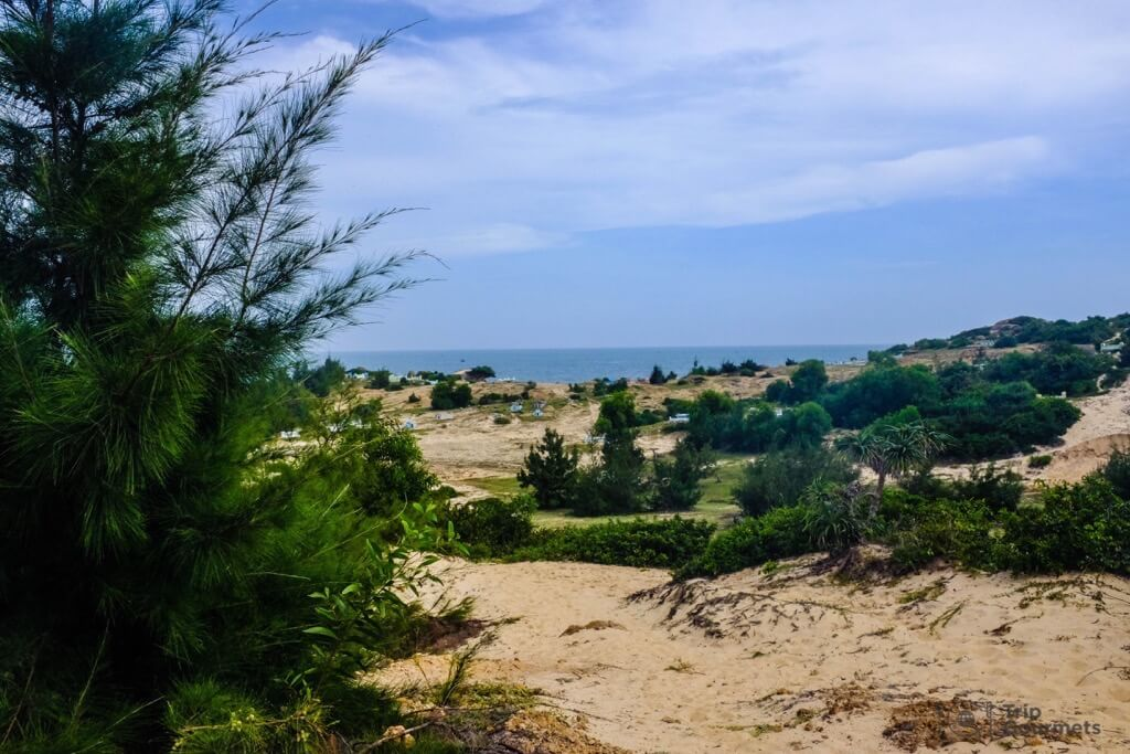 Things to do in Mui Ne Muine cape bushes sea