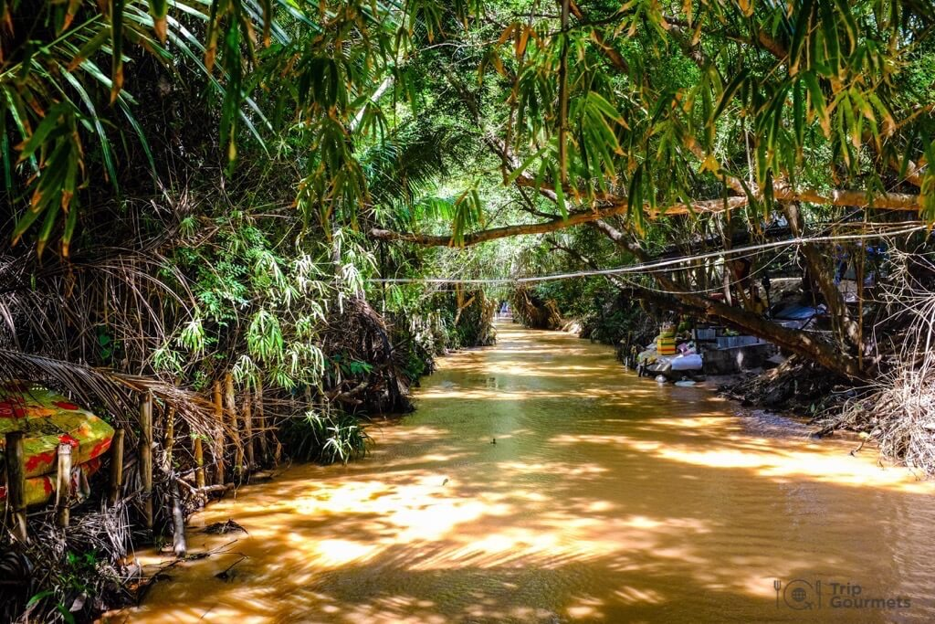 Things to do in Mui Ne Muine river fairy stream forest