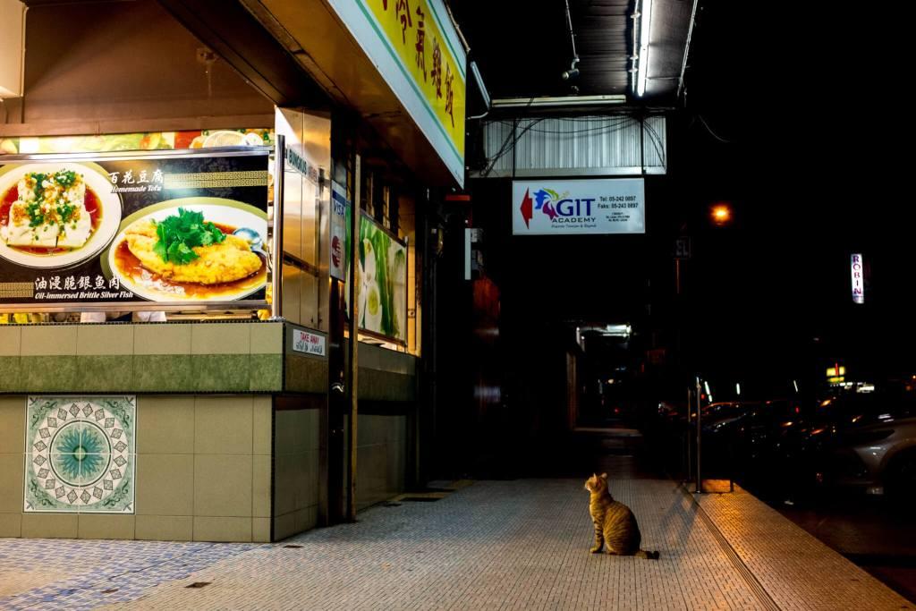 Best food in Ipoh header cat