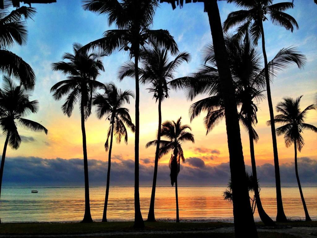 View Zanzibar Sunset Beach