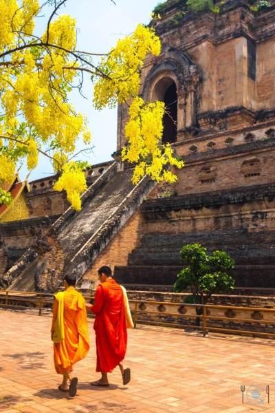 Chiang Mai Itinerary buddhist monks