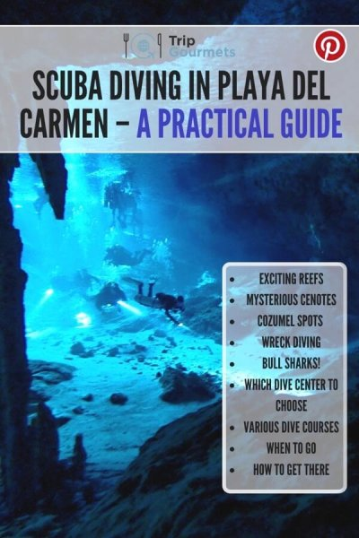 Scuba diving in Playa del Carmen Pinterest