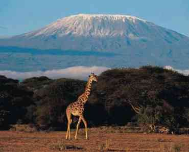 Mount Kilimanjaro, Tanzania - Places to Visit Before They Disappear From the Earth