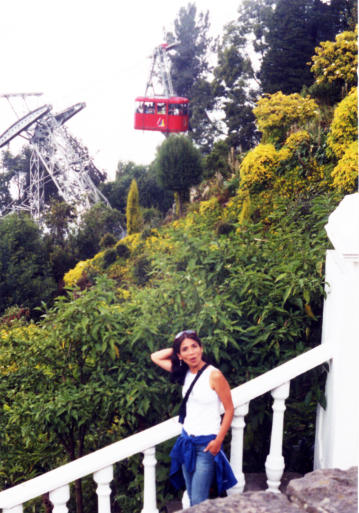 Bogotá vista de Pati con el fondo del funicular