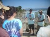mangrove time03