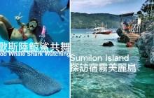 宿霧景點必遊【Oslob鯨鯊共舞】蘇米龍島Sumilon | 菲律賓推薦的行程