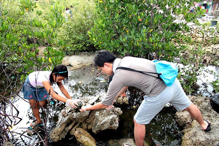志工活動 | 環境清潔
