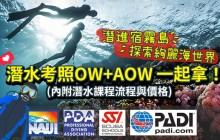 宿霧潛水考照【菲律賓遊學生專案】OW+AOW一起拿(內附潛水流程與價格)-Diving in Cebu