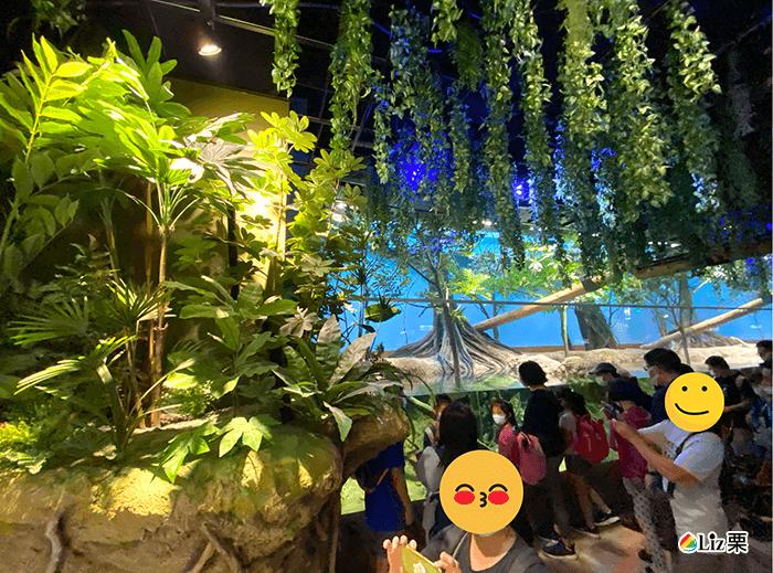xpark生態區