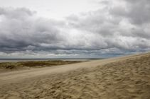 Baltic2016_Nida_030