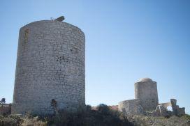 2017-07-05_250_Corsica_Bonifacio