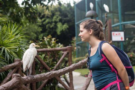 TripLovers_Malaysia_KL_047_KL-Bird-Park