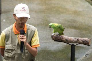 TripLovers_Malaysia_KL_076_KL-Bird-Park
