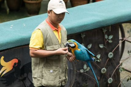 TripLovers_Malaysia_KL_080_KL-Bird-Park