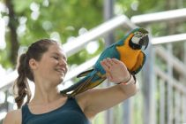 TripLovers_Malaysia_KL_082_KL-Bird-Park