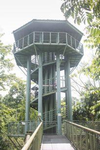 TripLovers_Malaysia_Sandakan_084_SepilokRainforest