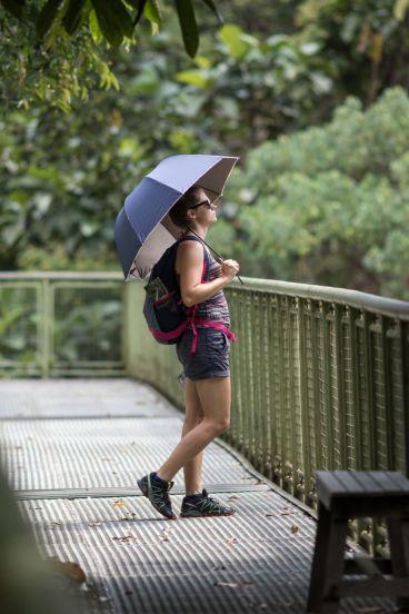 TripLovers_Malaysia_Sandakan_100_SepilokRainforest