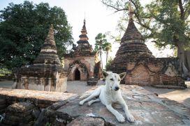TripLovers_Mandalay_216_mototrip2