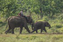 TripLovers_Chitwan_022