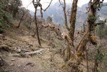 TripLovers_AnnapurnaCircuit_045