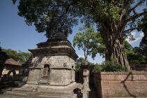 TripLovers_Kathmandu_256
