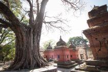 TripLovers_Kathmandu_260