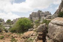 Andalusia2018_079_ElTorcal