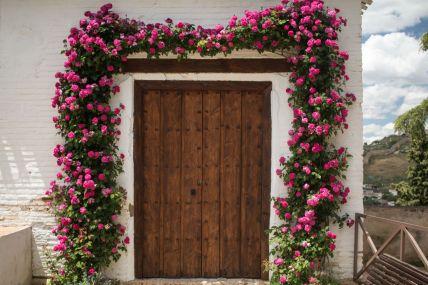 Andalusia2018_515_Granada&Alhambra