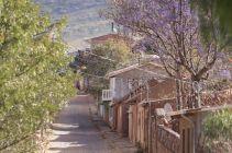 Bolivia_ToroToro_021