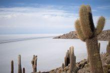 Bolivia_Uyuni_046