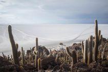 Bolivia_Uyuni_063