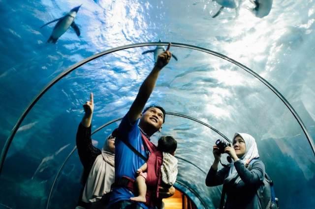 Langkawi Underwater World