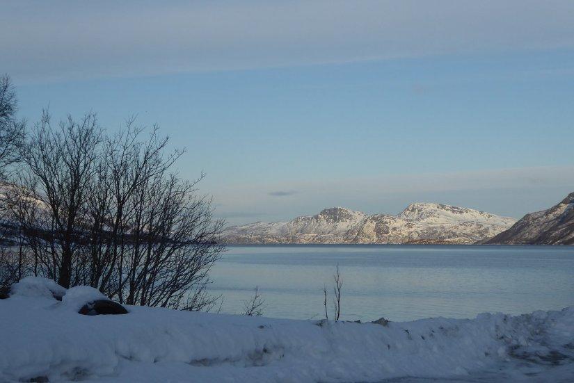Arctic Fjord tromso