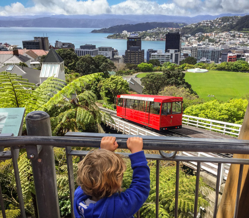 wellington with kids
