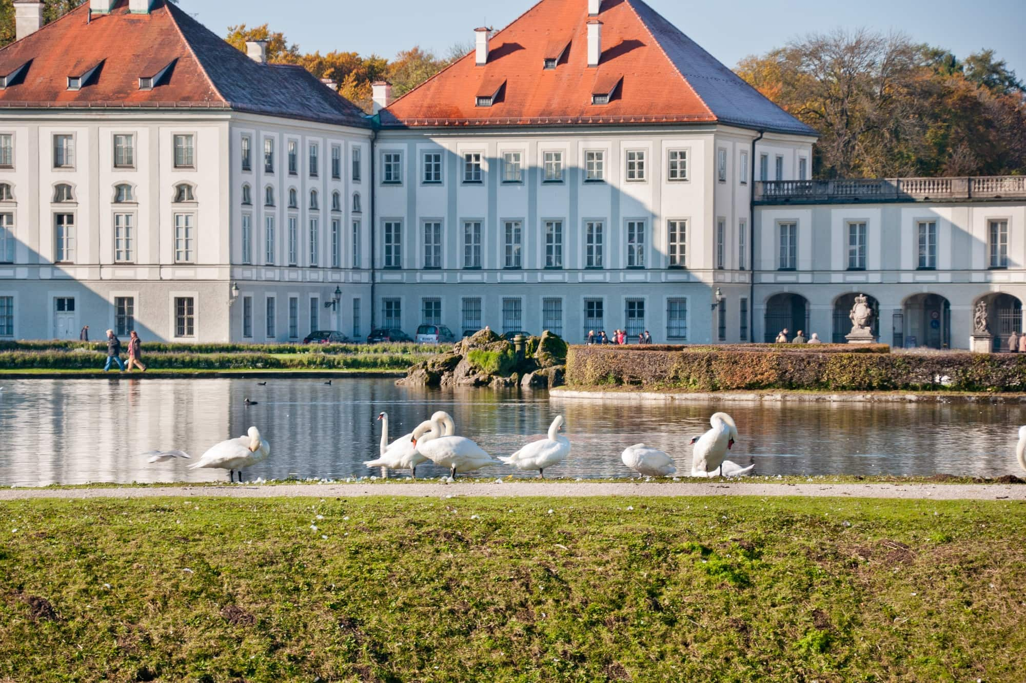 birds stand at a lake in front of the Nymphenburg Palace