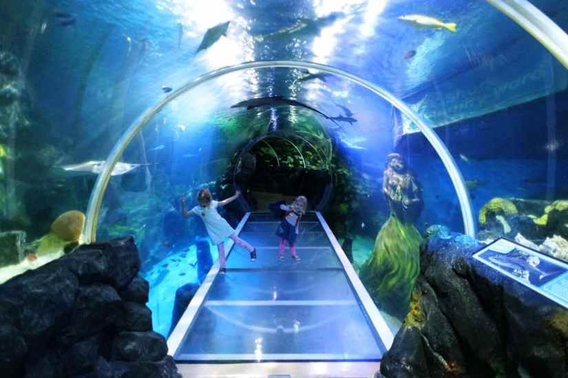2 girls are playing at SEA LIFE Centre Birmingham
