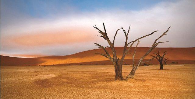 NAMIBIA_2011