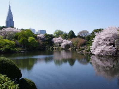 giappone-tokyo-garden