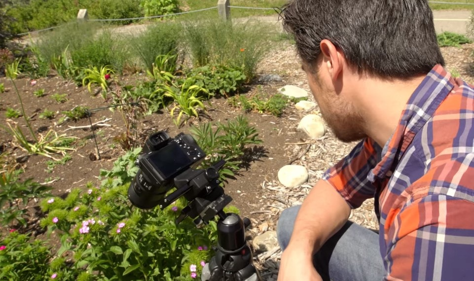 How I found the best tripod for macro photography