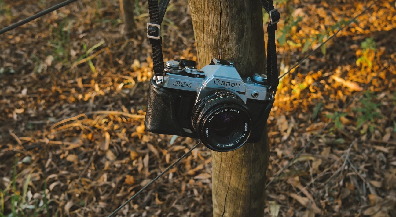 Top 5 Best Compact Cameras For Landscape Photography + Reviews!
