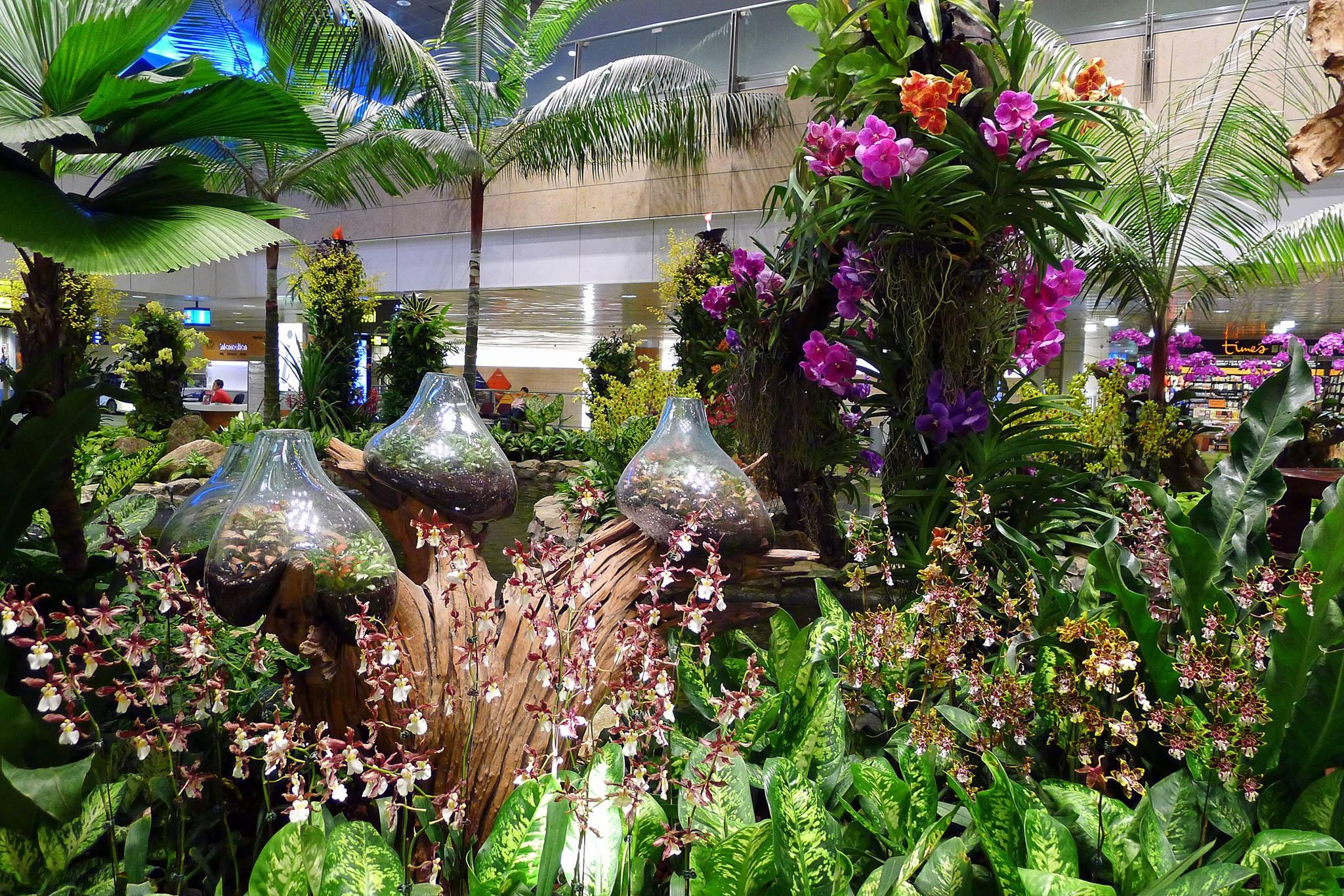 orchid garden  tripofun